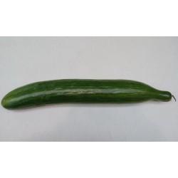 concombre pièce