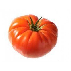 Tomate cotelée variété MARMANDE