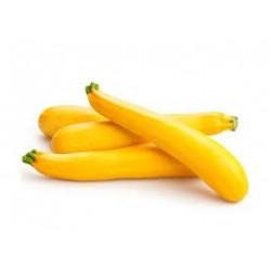 COURGETTE jaune variété ZEBRING